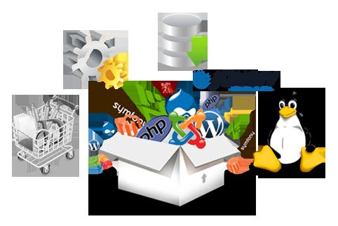 Web Development Qatar
